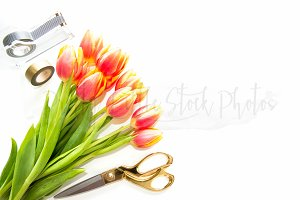 #349 PLSP Styled Desktop Stock Photo