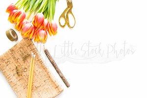 #350 PLSP Styled Desktop Stock Photo