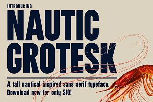 Nautic Grotesk - Modern Display Font