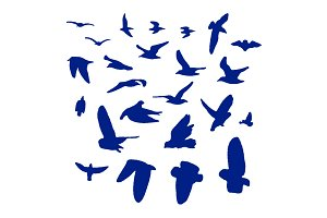 24 Vector Bird Silhouettes