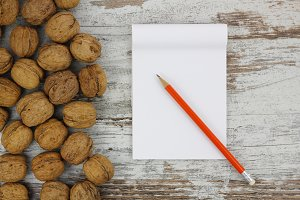 White notebook with walnuts