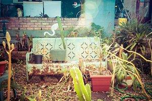 Funky Hostel Garden