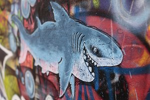 Shark Graffiti on the wall