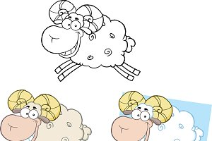 Ram Sheep Collection