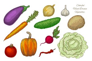 Vegetables. Vector Set