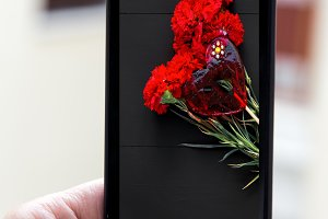 Hand holding smartphone with images