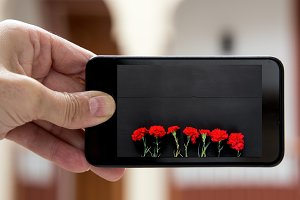 Hand holding smartphone with image