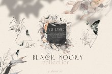Black noory colection 70PNG