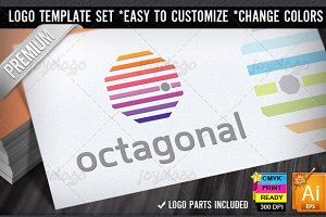Color Lines Octagonal Logo Template