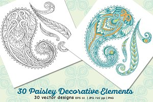 30 Paisley and Mandala Elements
