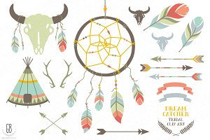Dream catcher, bison skull, feathers
