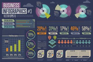 Business Infographic #3