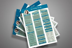 Professional Resume CV 3 colors