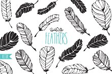 Feathers - Vector & PNG