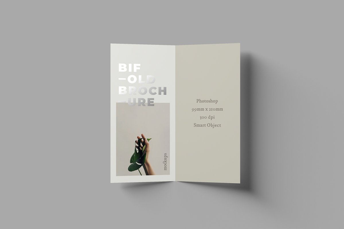 bifold dl brochure mockups  creative photoshop templates