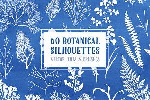 60 Botanical Vectors & Brush Pack