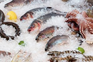 Fish and seafood on market stall