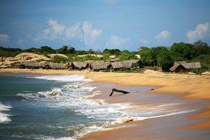 Straw Houses on a Beach