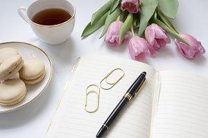 Modern Styled Notebook Mock Up