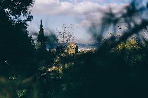 Ancient Agora view through the trees