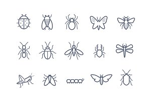 15 Insect Icons