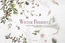 Winter Berries Christmas Watercolour