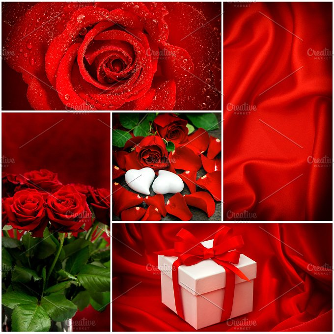 Red Roses. Valentines Day - Holidays