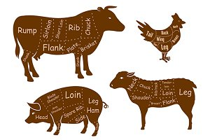 Beef, pork, chicken, lamb meat cuts