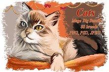 Cats Set Mega Bundle, 80 Breeds PSD
