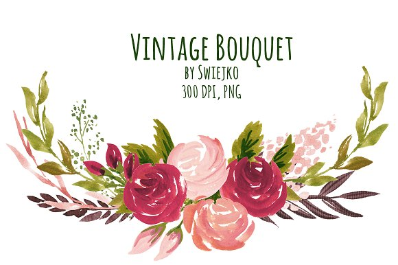 Vintage Roses Illustrations Creative Market