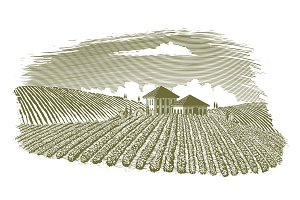Woodcut Vineyard Landscape
