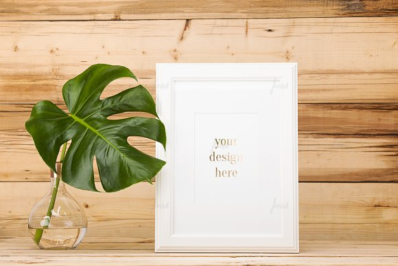 White frame with monstera leaf