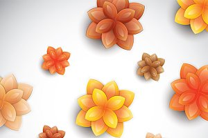 Color paper flowers