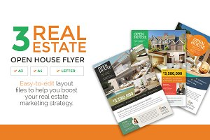 3 Clean Real Estate Flyer Vol.1