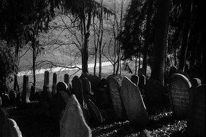 Jewish cemetery (Trebic in Moravia)