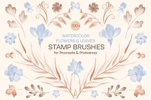 Watercolor Flowers & Leaves Brushes by  in Add-Ons