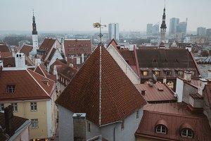 roofs of Tallinn