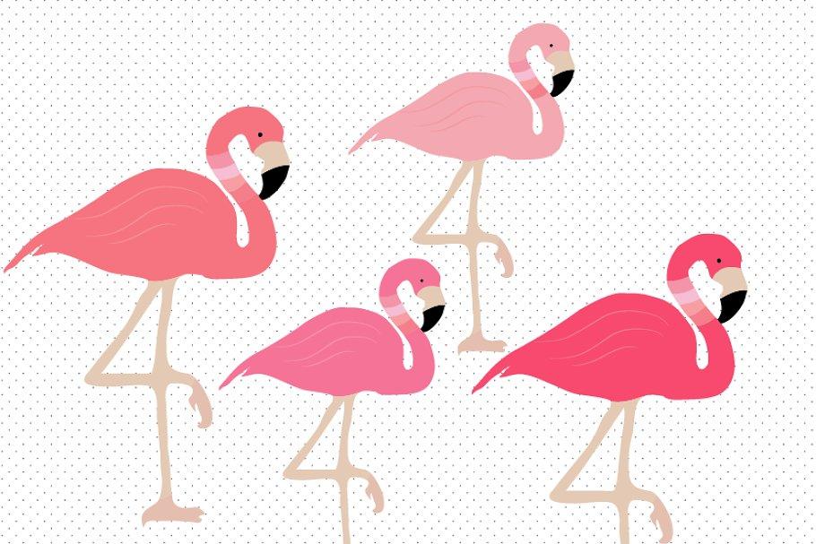 Flamingo cute. Clipart