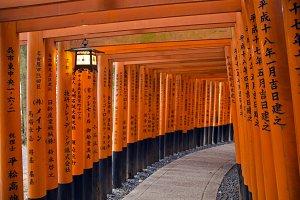 Torii gates in Japan