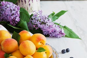 ripe apricots and lilac flowers