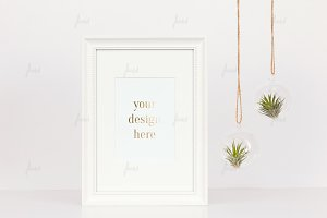 Tillandsia white frame mock-up