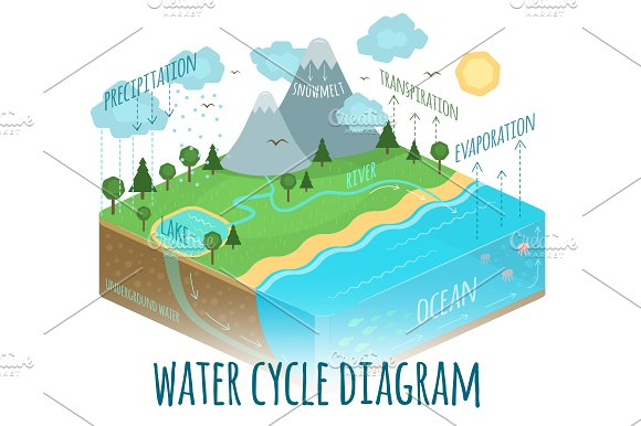 Water cycle diagram illustrations creative market ccuart Gallery