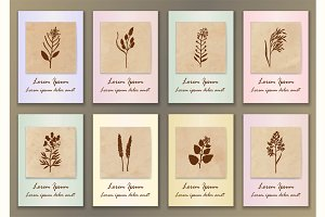 8 Vintage Herbal Posters