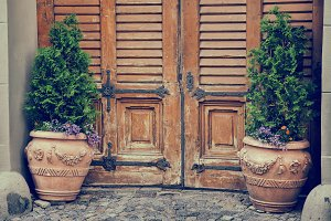 Entrance door and flower pots