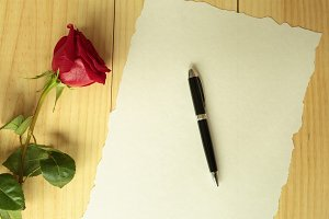 A red rose with a pen