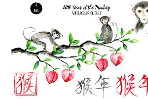 Watercolor Monkey