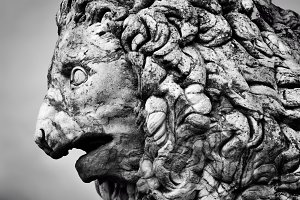 Sculpture of Medici lion.