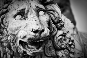 Sculpture of The Medici lion.