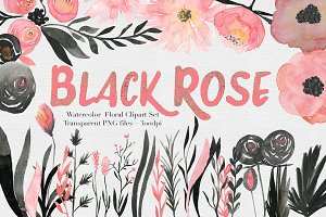 Black & Pink Rose Watercolor Set