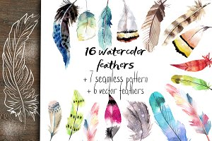 Set of feather and  pattern